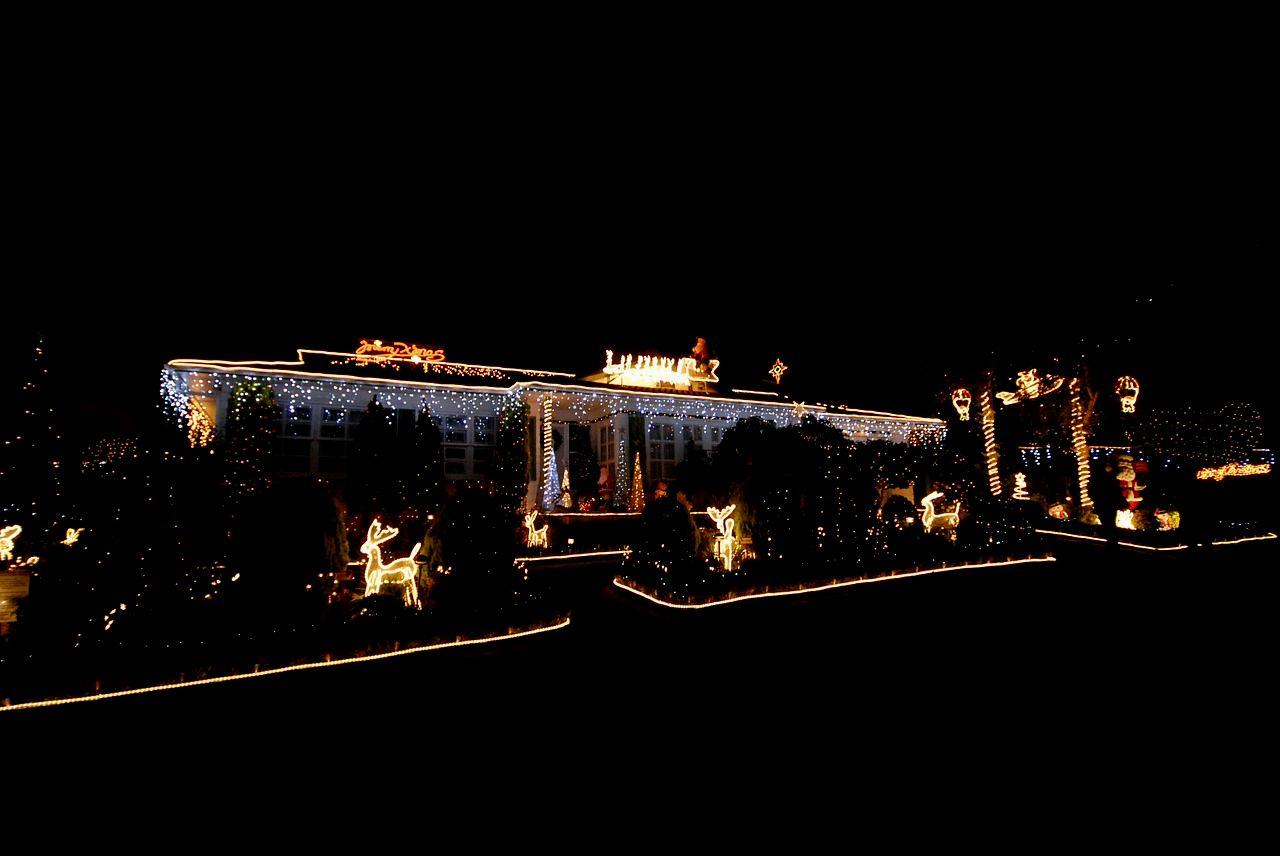 beautiful garden xmas ideas image-Stunning Garden Xmas Ideas Photograph