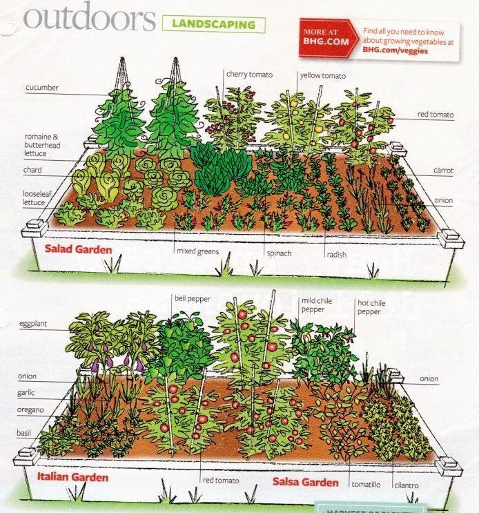 beautiful gardening magazines layout-Beautiful Gardening Magazines Concept