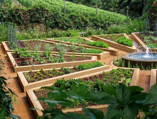 cool kitchen garden ideas in hindi collection-Top Kitchen Garden Ideas In Hindi Décor