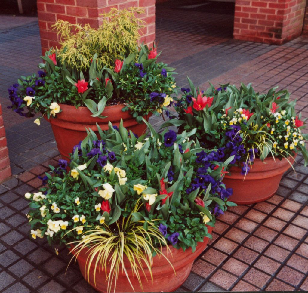 fantastic garden container ideas layout-Excellent Garden Container Ideas Photograph