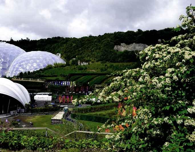 luxury simple garden ideas on a budget uk design-Elegant Simple Garden Ideas On A Budget Uk Gallery