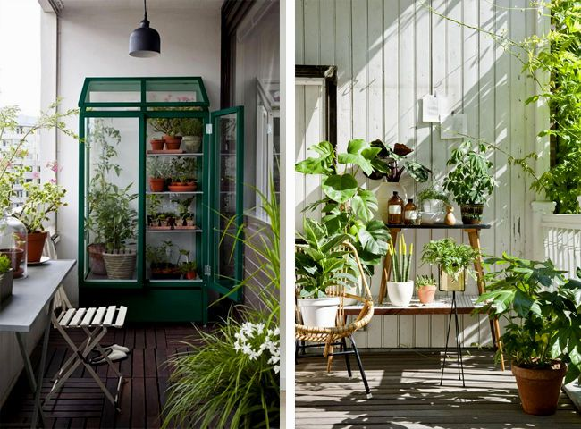 top balcony vegetable garden ideas for apartments architecture-Inspirational Balcony Vegetable Garden Ideas for Apartments Photo
